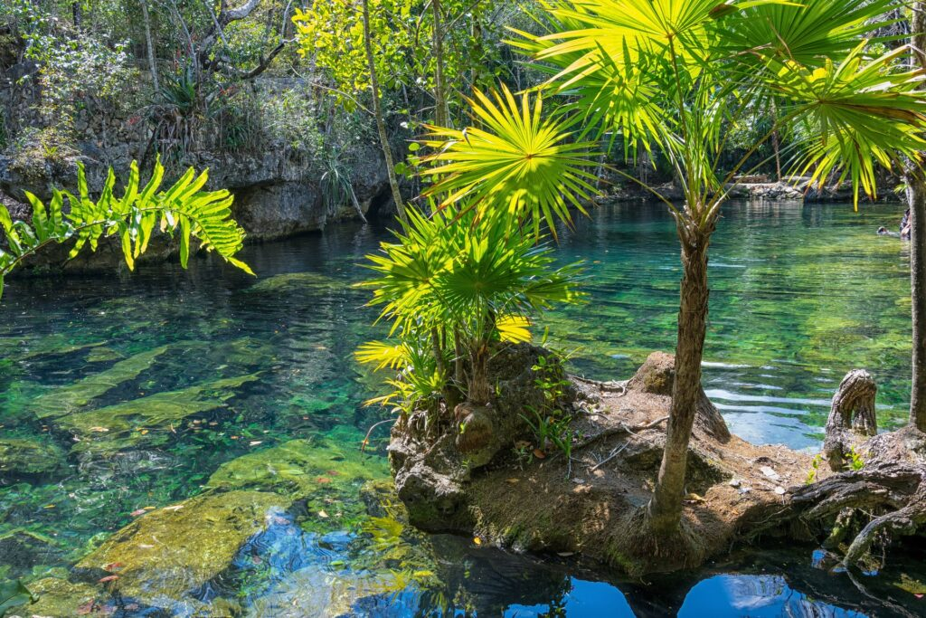 mexico vacation property yucatan cenote